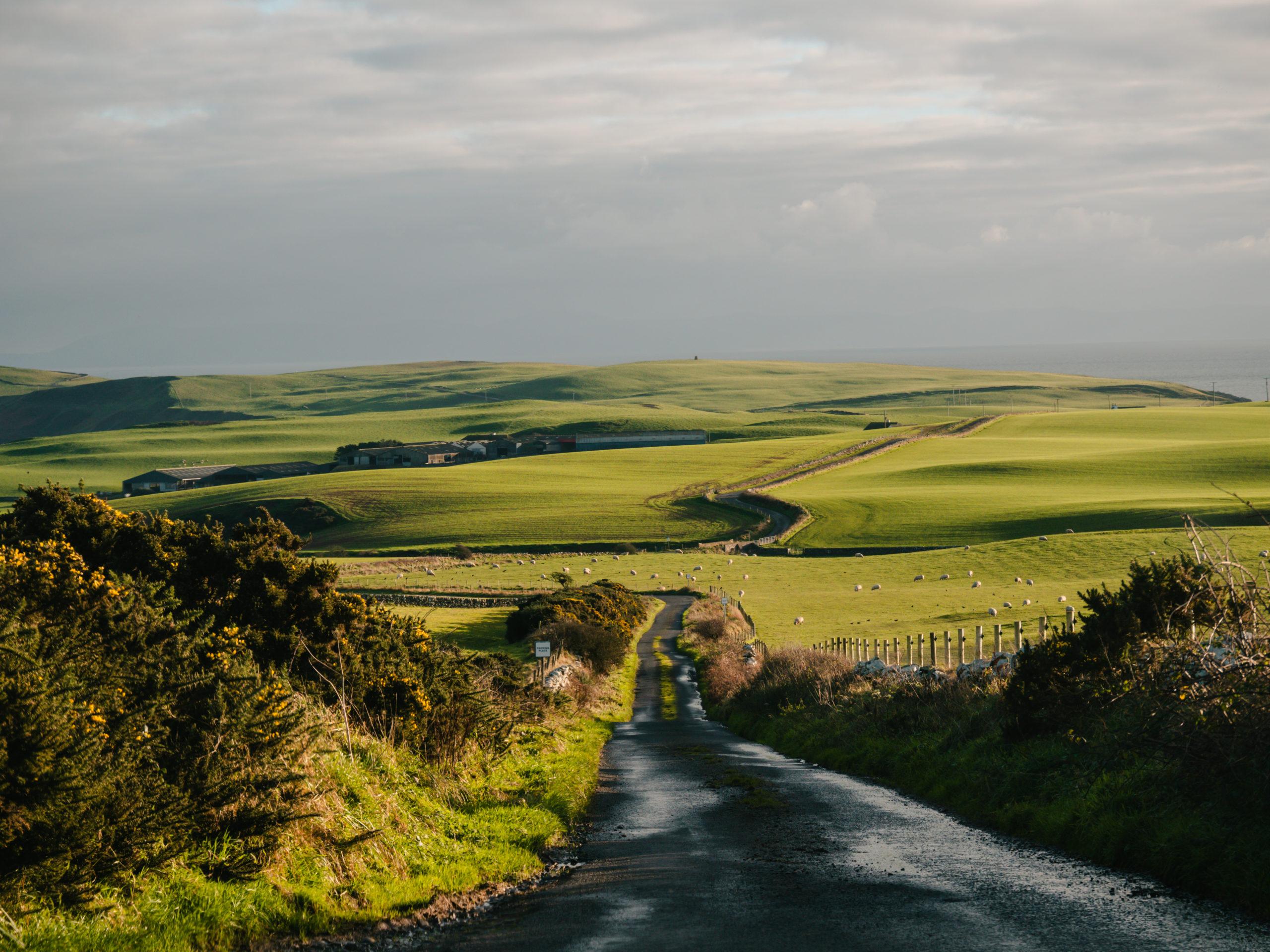 mull of galloway écosse herbe colline mer
